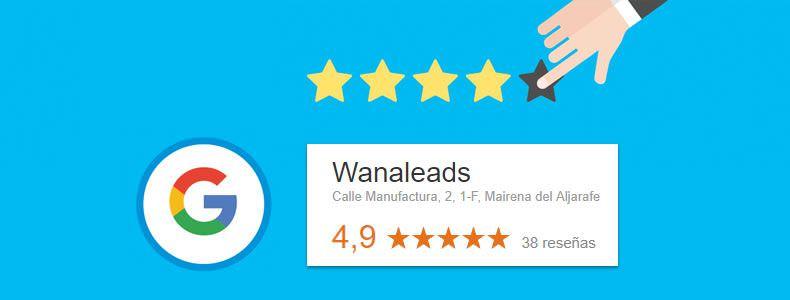 Reseñas de Wanaleads