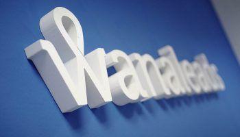Qué es un lead en Wanaleads
