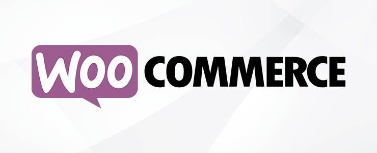 Cómo elegir la mejor plataforma de comercio electrónico en 2020 | Woocommerce